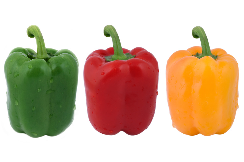 Fresh green, red and yellow peppers with water drops isolated on white background.